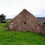 Scottish McCabe Roots