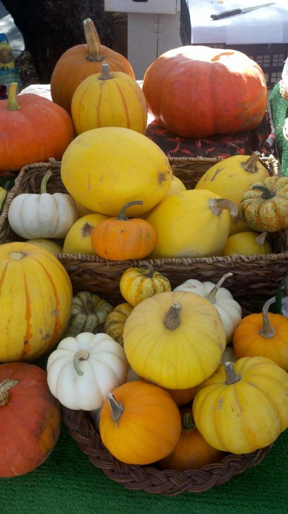 Autumn Recipe ideas