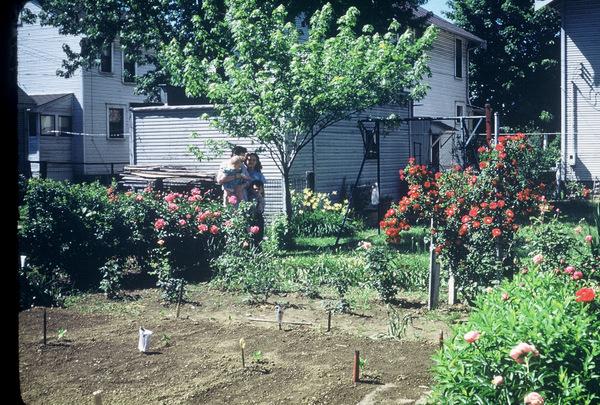 Loretta Avenue garden