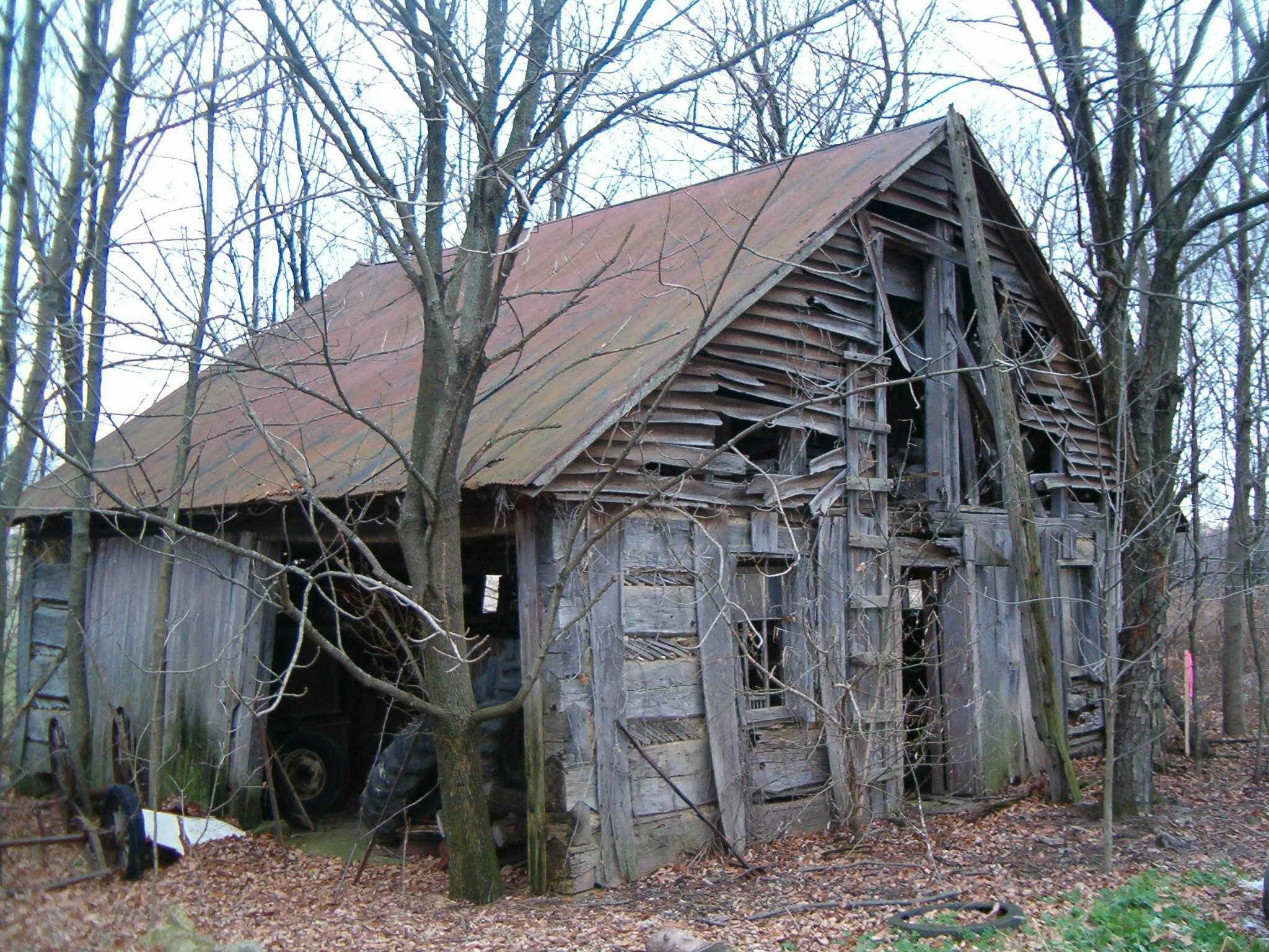 Abraham Tschantz cabin